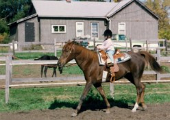 My first solo ride on my Mom's horse Saitara when I was 2