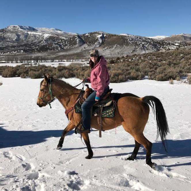 co-horseride